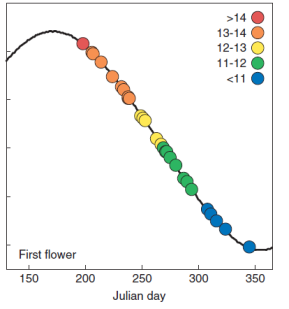 New Paper: Evolution of Sunflower Biomass Allocation and Reproductive Timing